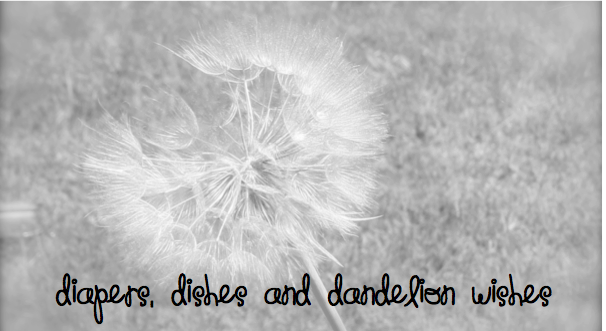 Diapers, Dishes and Dandelion Wishes