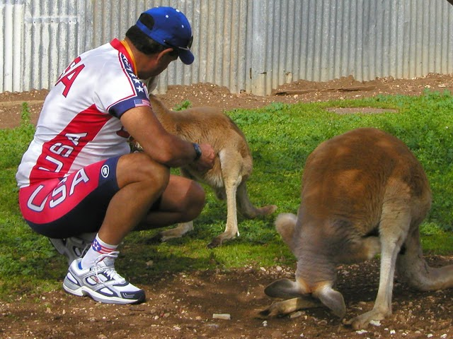 Don't feed the Roo's