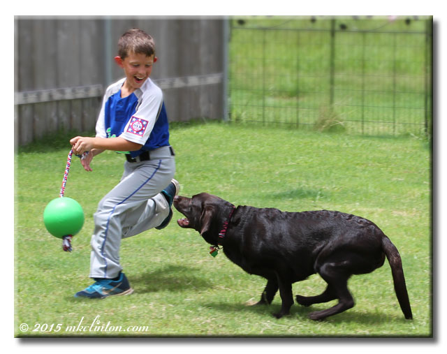 A boy and his dog playing chase.