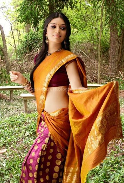 bollywood, tollywood, hot, Nisha, shetty, hot, navel, in, saree, pics