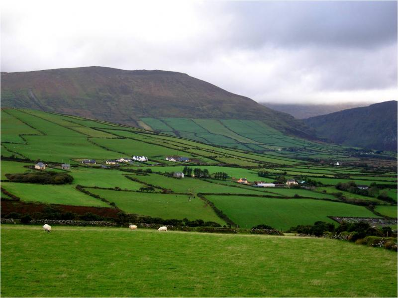 how to find a farm in ireland