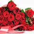 Ảnh hoa hồng đẹp nhất năm 2014