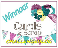 Winnaar Cards & Scrap