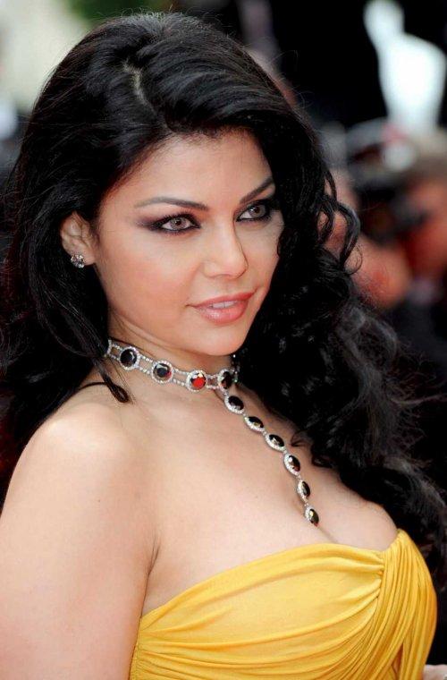Biography of haifa wehbe