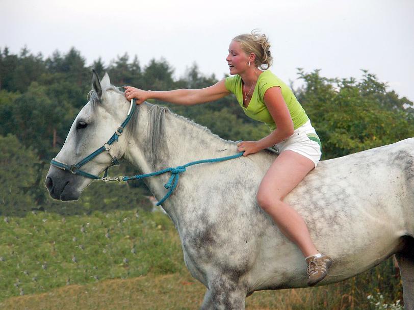 Porn donkey rides girl