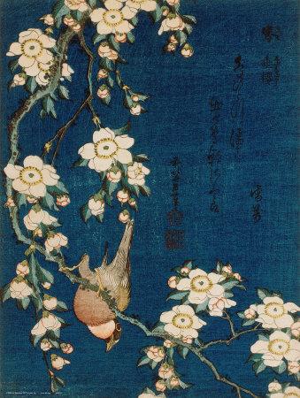 hokusai katsushika cherry tree