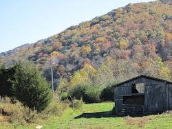 Fall in Fannin County