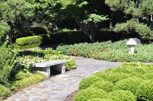 Japanese Garden, East Gosford
