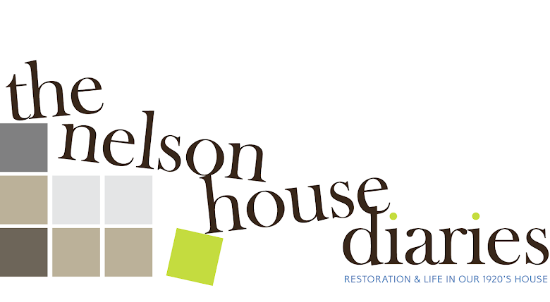 The Nelson House Diaries