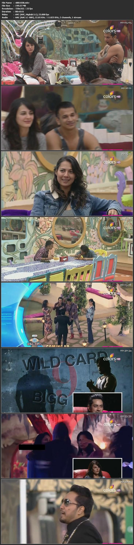 Screenshots Of Hindi Show Bigg Boss 9 2016 22nd January Episode 103 200MB 480P HD