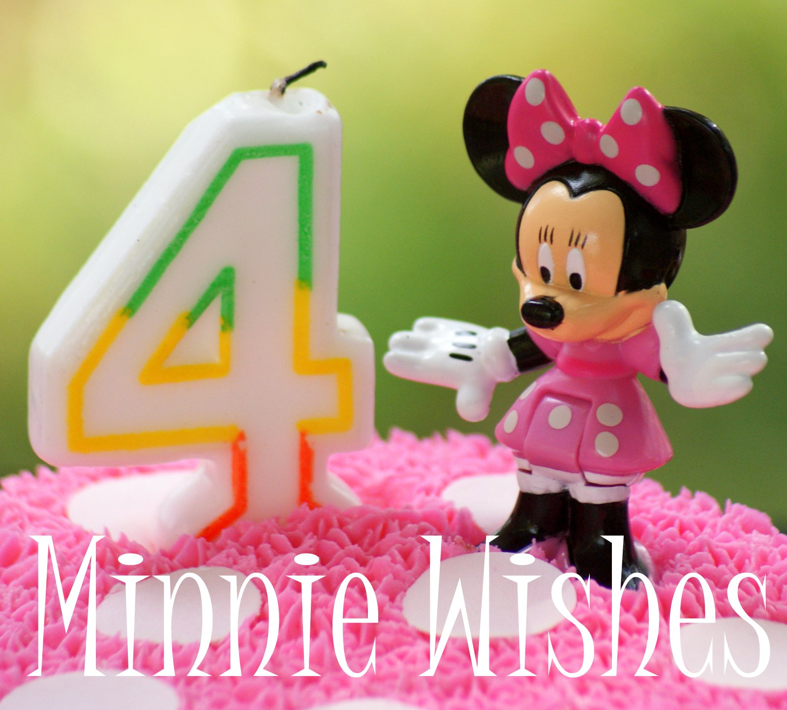 A little loveliness a minnie birthday party over the weekend we celebrated niece kadences 4th birthday for months she has known that she wanted her party to be minnies bowtique m4hsunfo