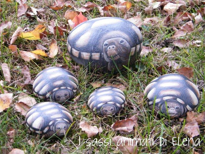 Elena sanson arte su sasso for Sassi per tartarughe