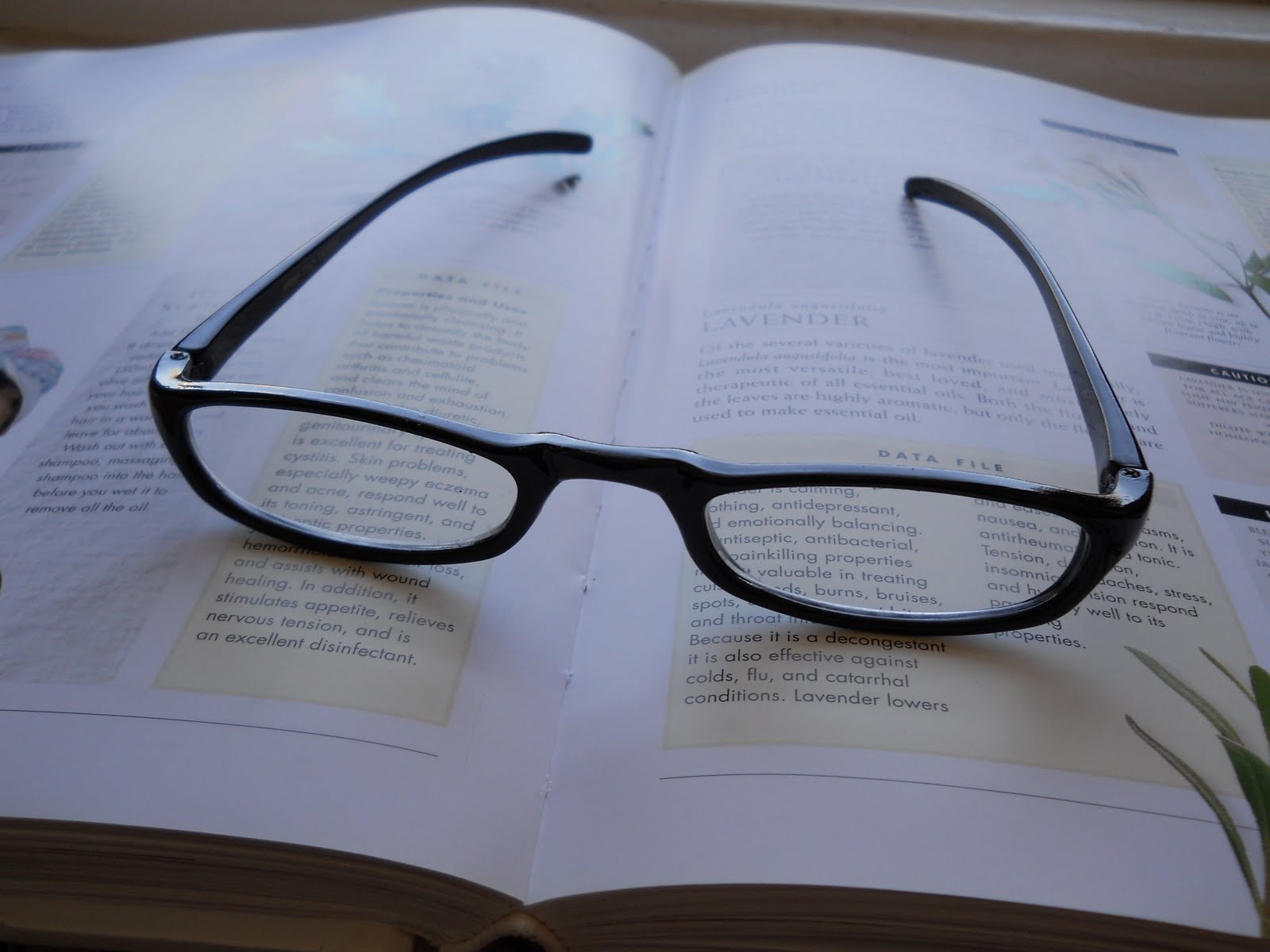 Eyeglass Frames Hurt Ear : Reading Glasses Hurt Nose