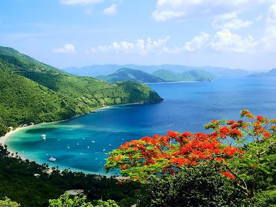 Isla bonita montañosa con plantas barcos y casas