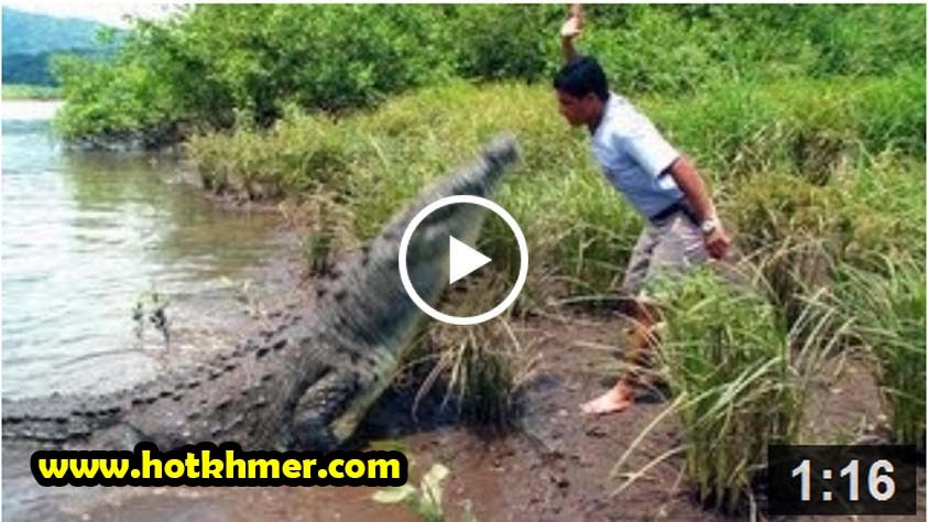 CRAZY MAN FEEDING GIANT CROCODILE