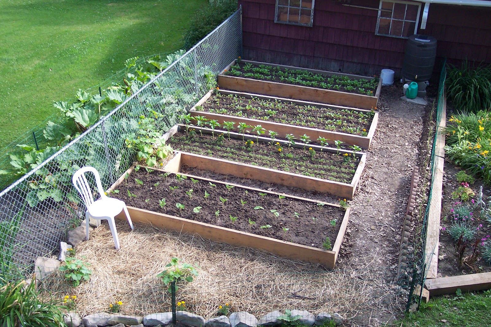 My Special Homestead - Getting Back to Basics: The Results ...