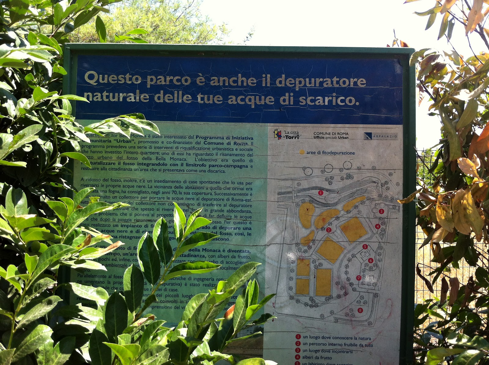 Fitodepurazione water management and sustainable for Depuratore laghetto