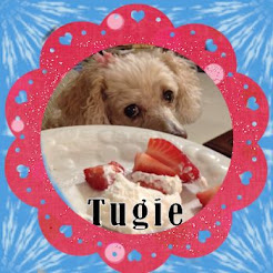 Tugie The Toy P