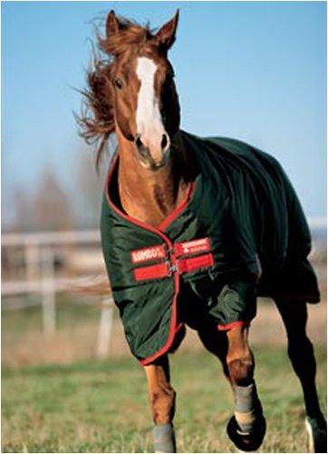 Horse Gear Reviews Rambo Rugs