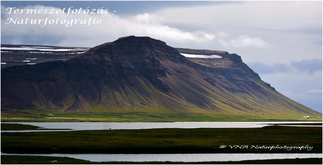 VNA Naturphotography