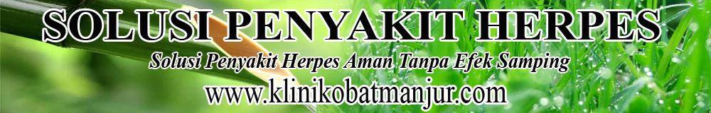 obat herbal penyakit herpes genital