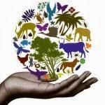 Οικολογία και οικονομία