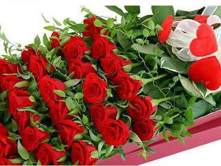 cajas de flores rojas