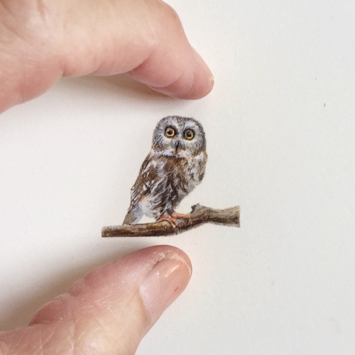 12-Owl-Karen-Libecap-Star-Wars-&-other-Miniature-Paintings-and-drawings-www-designstack-co