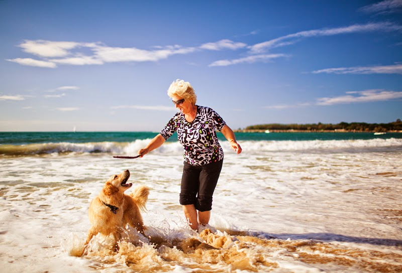 An older woman and her dog paddling and playing on the beach