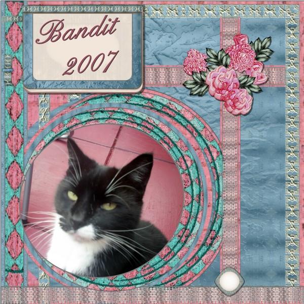 Feb. 2016 – Bandit – 2007.