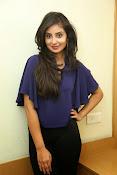Bhanu sri mehra sizzling photos-thumbnail-11