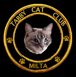 We Are Tabby Cat Club Members