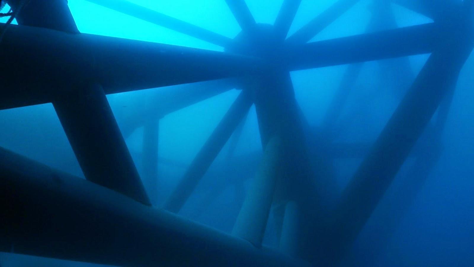 Il dopo Concordia all'isola Del Giglio