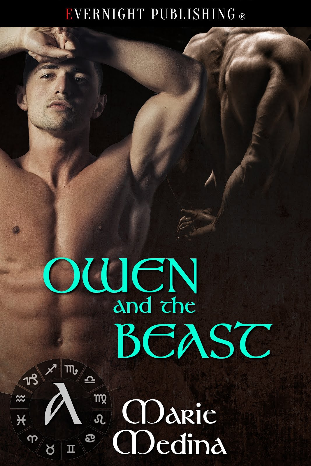 Owen and the Beast (Valladora Tales 2)
