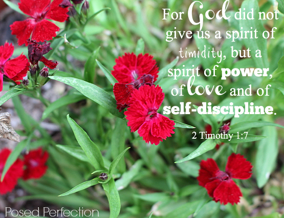 Food for the Soul ~ 2 Timothy 1:7