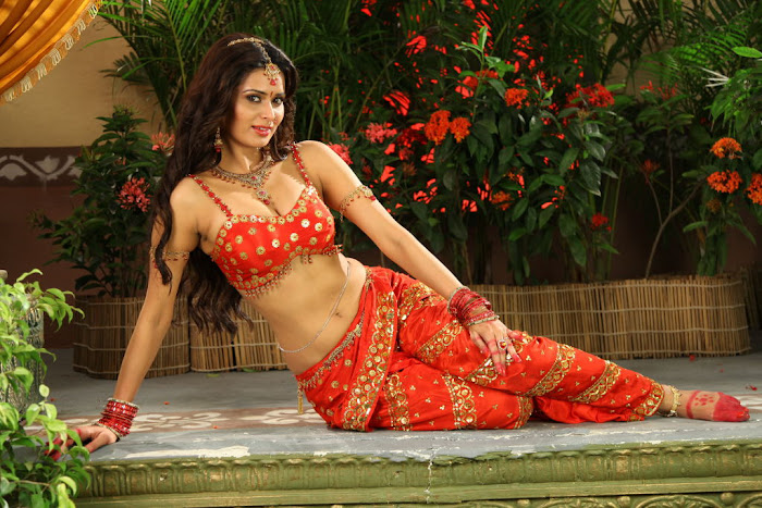 meenakshi dixit new hot photoshoot