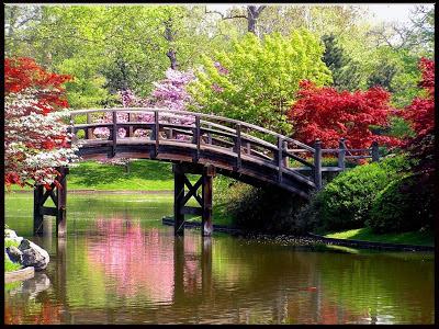 Pranvera në vendin tim,ese per pranveren,pranvera ese,hartim per pranveren,pranvera ne vendin tim
