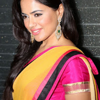 Sameera reddy saree hot stills at jewellery design launch
