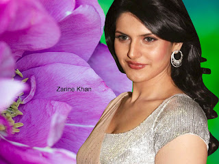 Zarine Khan Awesome Wallpapers