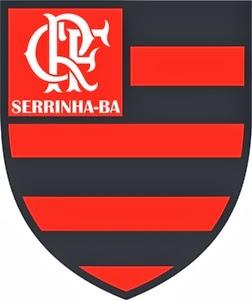 Flamengo da AAPS
