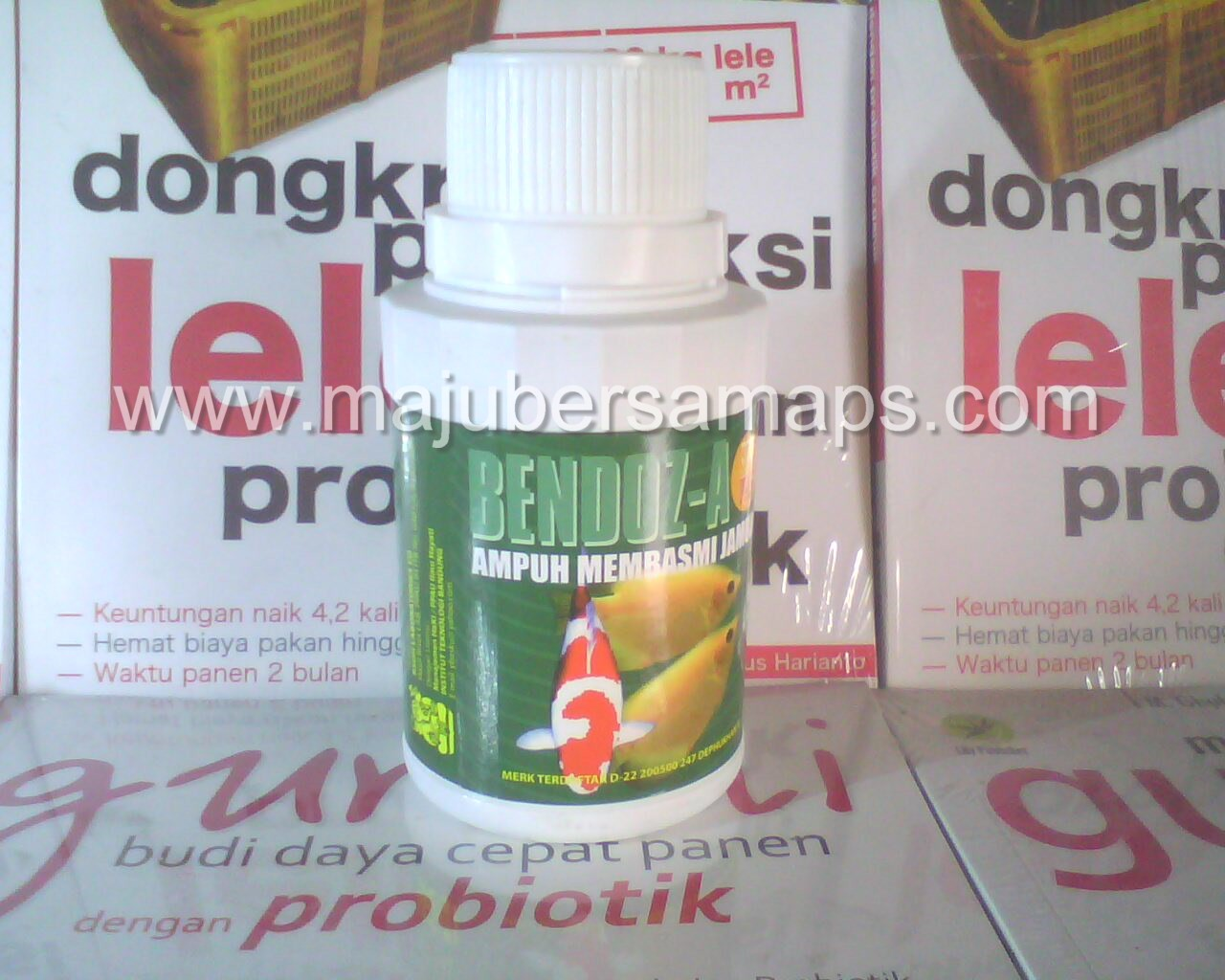 Supplier area sumatera probiotik gugus simba plus