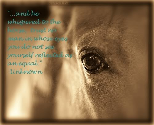 Little Cowgirl Sayings And Quotes. QuotesGram Horses Eyes Quotes