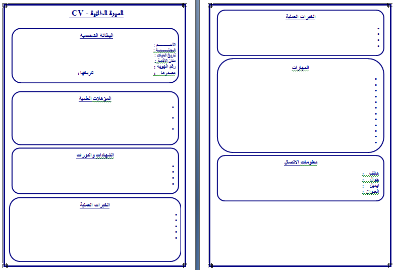 exemple cv en arabe word