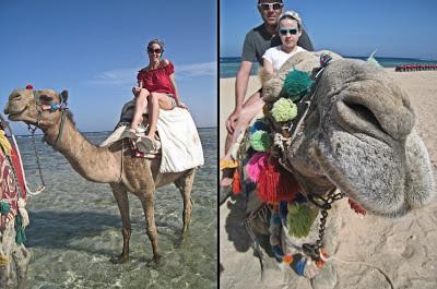 Giro cavallo cammello Fantazia Marsa Alam 2013 rebeccatrex