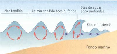 Gráfico explicativo del Tsunami
