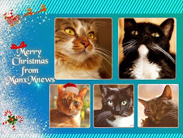 Merry Christmas Manx Mnews and family!