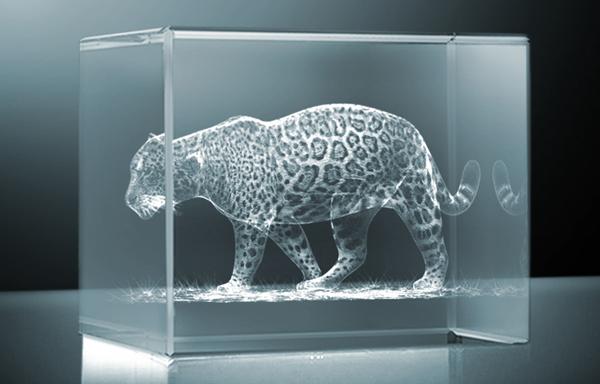 [Imagem: Cubo3D-leopardo.jpg]