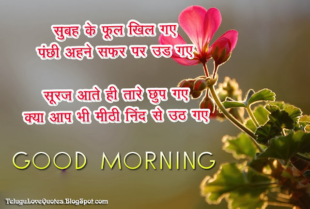 Good Morning Shayari in Hindi  Telugu Ammaye.
