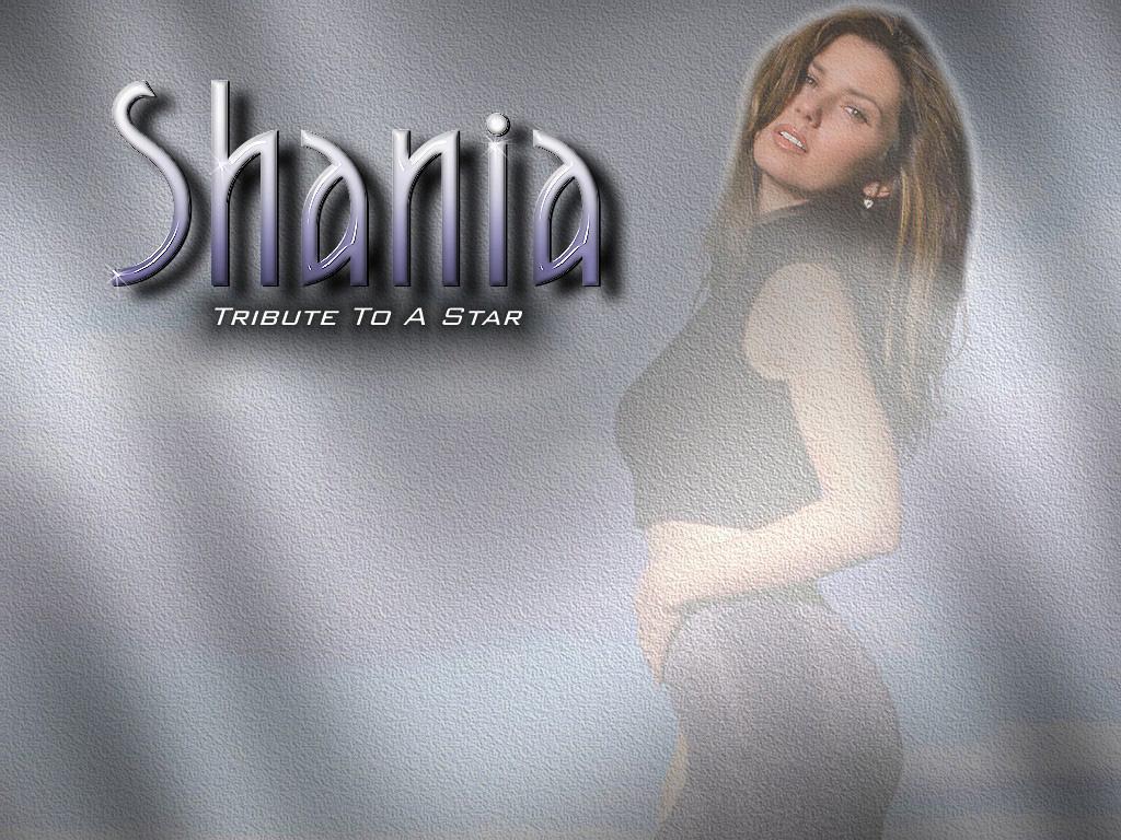 http://4.bp.blogspot.com/-MkvhMlj77xs/T1Rx5mA5QxI/AAAAAAAACuw/eF4rP6-IXLs/s1600/Shania+Twain+%2802%29.jpg