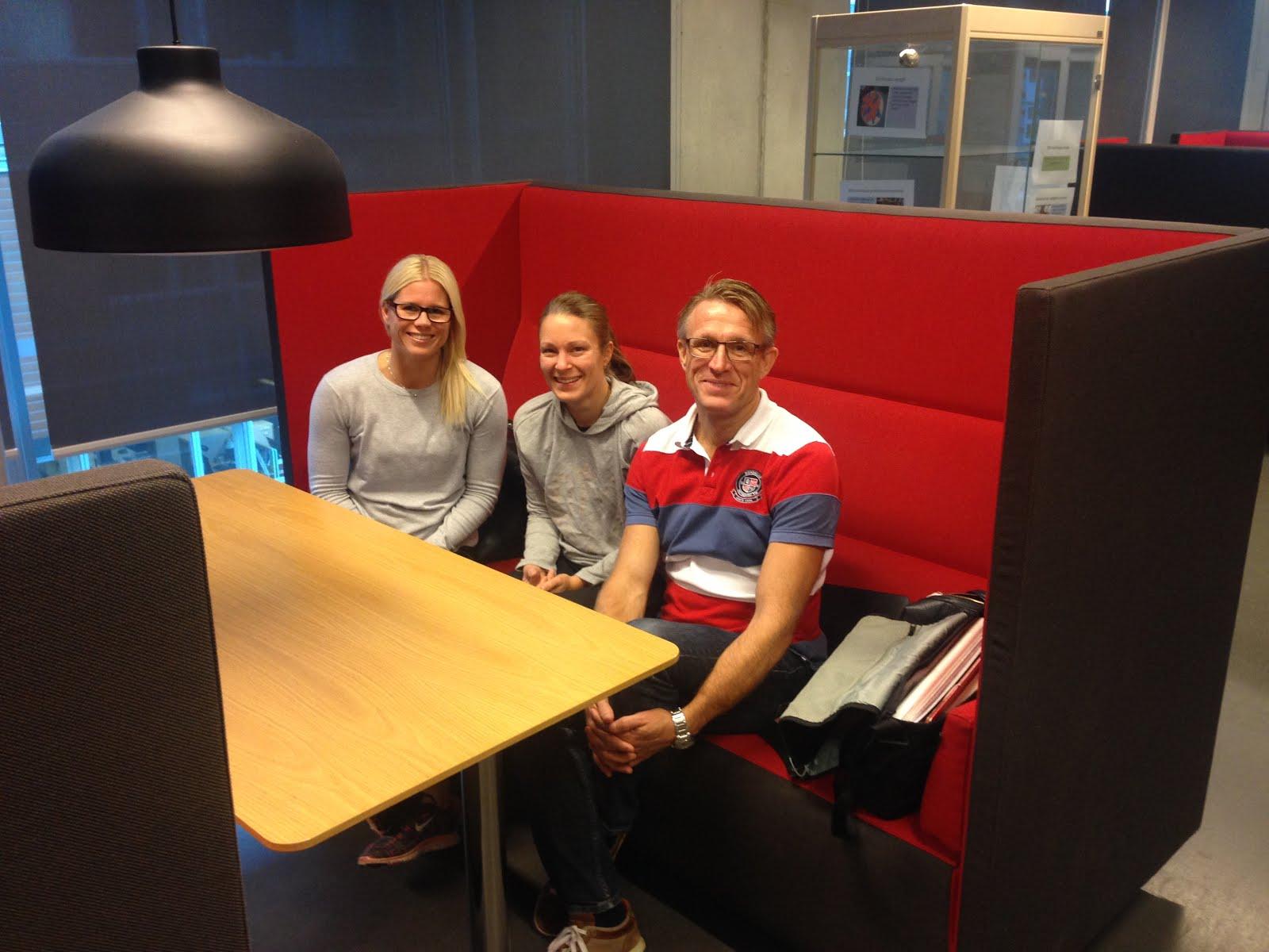 Examensarbete av Malmö Högskola
